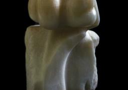 פרח אבן